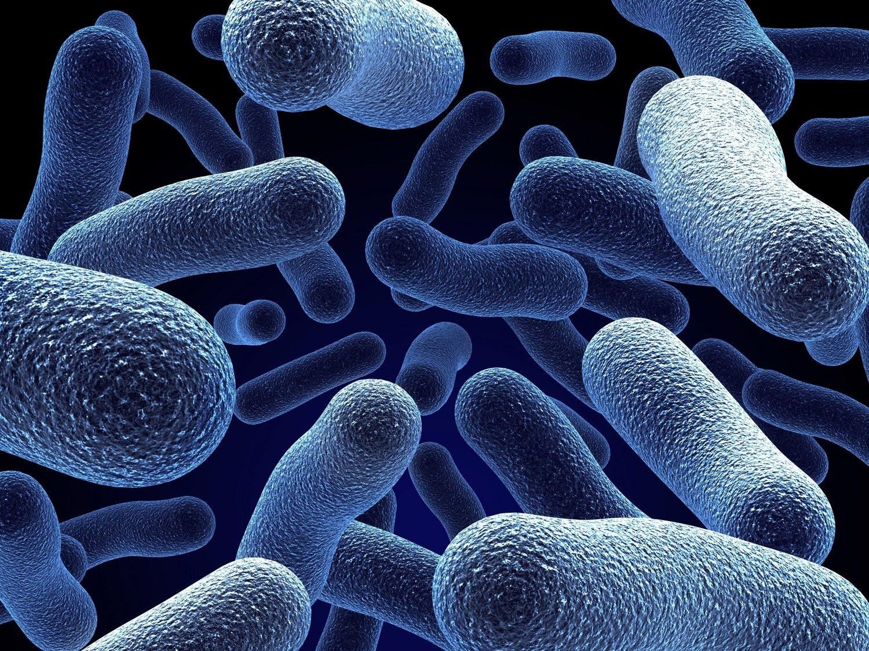 mic corrosie bacterie